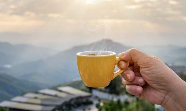 Cafetière portable : un réveil idéal au camping